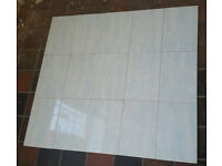 Details about Glazed wall tiles ( Johnson Tiles ) 30x 20cm in white with blue