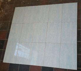 Glazed wall tiles ( Johnson Tiles ) 30x 20cm in white with blue