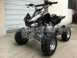 110cc DIRT QUAD BIKE ATV BUGGY CYCLONE REMOTE STOP 4 STROKE ELEC Derrimut Brimbank Area Preview