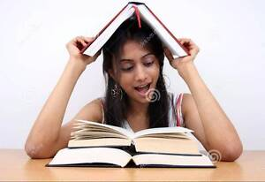 ENGLISH COACHING IN WESTERN SYDNEY - TUTORING EXCELLENCE Seven Hills Blacktown Area Preview