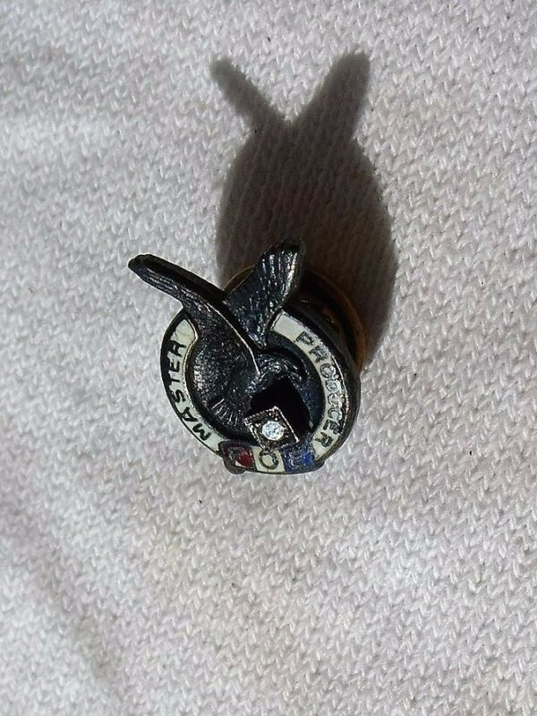 Vintage FOE Fraternal Order of Eagles Master Producer Sterling Diamond Lapel Pin
