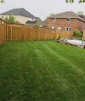 SOD INSTALLATION SAME DAY SERVICE CALL US TODAY