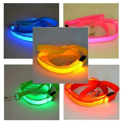 ADD&SHIP Nylon LED Light Up Dog Leash Night Safety - LED Flashing Glow ()