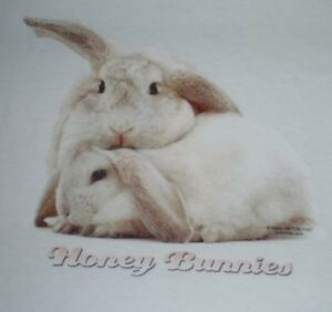Easter-Bunny-Honey-Bunnies-Babydoll-T-Shirt-Ladies-or-Junior-Sizes