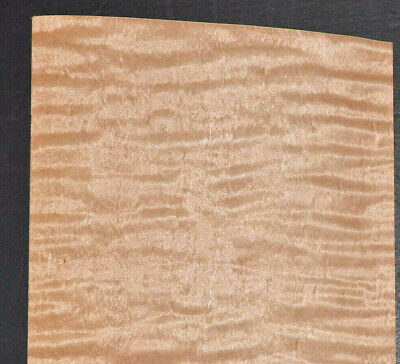 Curly Maple Raw Wood Veneer Sheets 5 X 22 Inches 142nd 7717-37