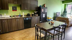Waterloo & Laurier Student Apts! WIFI Included! MUST SEE! Kitchener / Waterloo Kitchener Area image 3