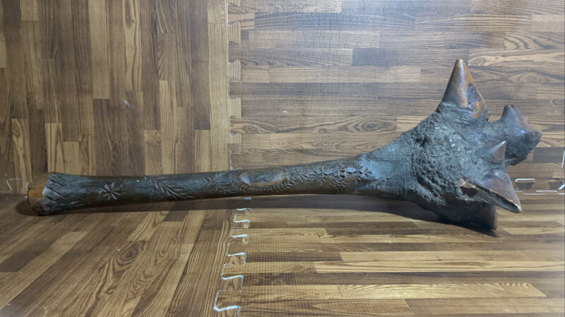 Native American Penobscot Carved Figural Wolf Effigy Root War / Ceremonial Club