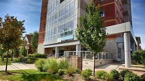 Waterloo & Laurier Student Apts! WIFI Included! MUST SEE! Kitchener / Waterloo Kitchener Area image 9