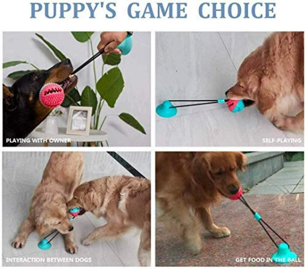 Pet Dog Feeding Bowl Travel Portable Folding & Interactive F