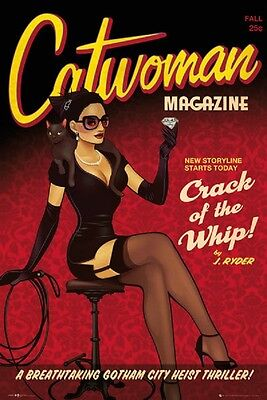 24x36 CATWOMAN POSTER CRACK THE WHIP DC COMICS BATMAN Shrink Wrapped](Batman Poster)