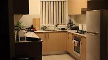 New Apartment. Room for rent for Indian couple or student Parramatta Parramatta Area Preview