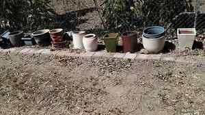 pots for sale Leanyer Darwin City Preview