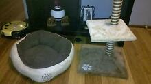 cat scratching post and cat bed Waratah Newcastle Area Preview