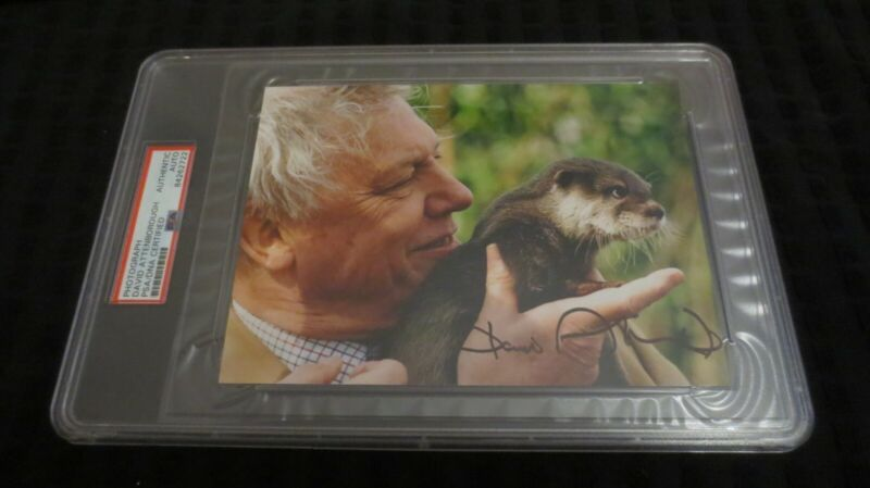 David Attenborough Naturalist BBC broadcaster signed autographed psa slabbed