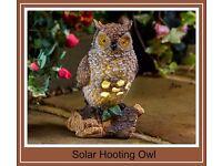 Solar Hooting Owl - £20