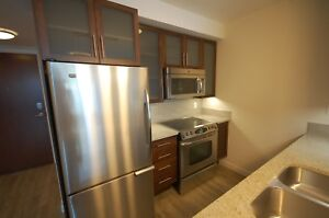 Modern 1 Bed+Dens at the Vertu Suites in Downtown! Avail Jan