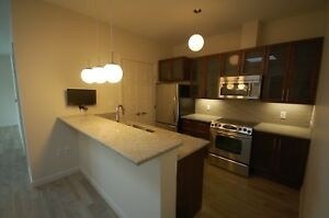 Amazing 2 Bed+DENs at the VERTU Suites Downtown! Avail MAY