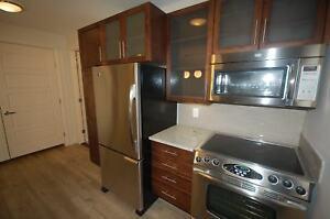 Modern, Trendy Vertu Suites Downtown 2 Bed, 2 Bath ! AVAIL OCT