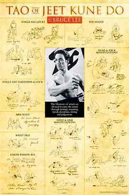 Bruce Lee Teaching's  - TAO OF JEET KUNE-DO (Large Poster)