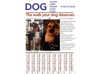 Dog Walker/Trainer in Isle of Dogs