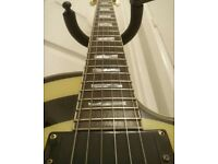 Epiphone Zak Wylde Guitar