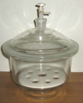 Glass Desiccator Vacuum Jar Lab Dessicator Dryer 6 New