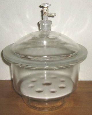 Glass Desiccator Vacuum Jar Lab Dessicator Dry 12 New