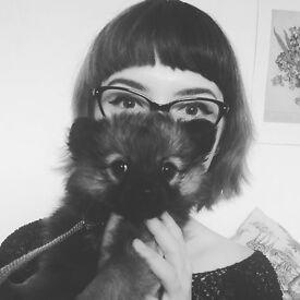 Dog Walker/Cat Sitter based in Waterbeach, Cambridge