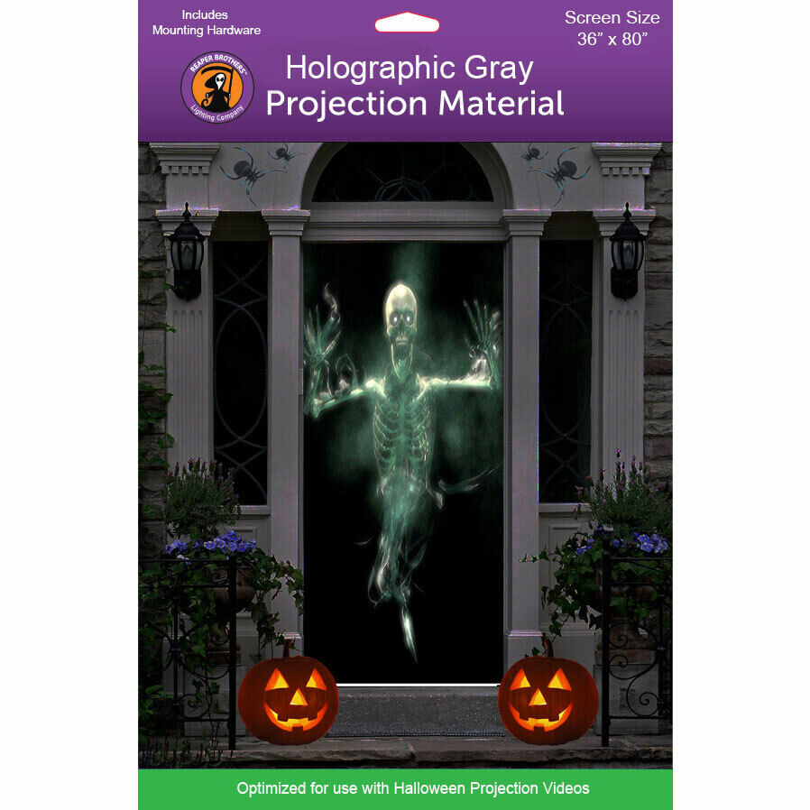 gray holographic 36 x80 high resolution rear