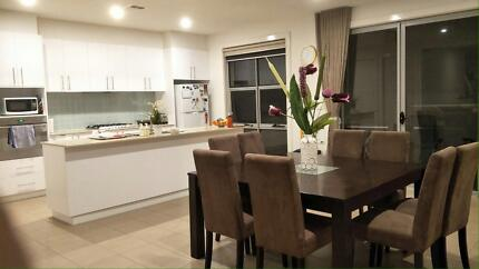 Room for rent beautiful furnished  Belconnen Belconnen Area Preview