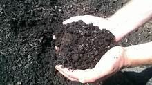 Garden mix , top quality organic Parramatta Parramatta Area Preview