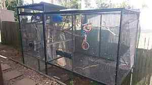 HUGE bird aviary Cooroy Noosa Area Preview