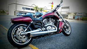 2009 HARLEY VROD MUSCLE New Farm Brisbane North East Preview