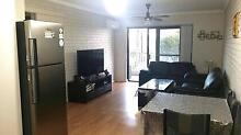 Fully Furnished & Tidy :Close to Transport,Park,Gym,Shopping,City Osborne Park Stirling Area Preview