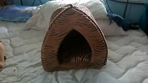 Kitty or Small Dog Bed Molendinar Gold Coast City Preview
