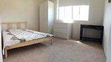 SINGLE ROOM FOR RENT Chatswood Willoughby Area Preview
