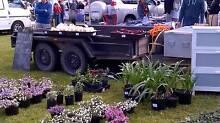 Paterson Car Boot Sale, Spring Fair & Swap Meet Paterson Dungog Area Preview