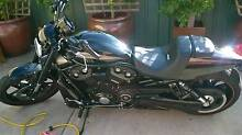 night rod 2016 model very low ks/ immaculate Magill Campbelltown Area Preview