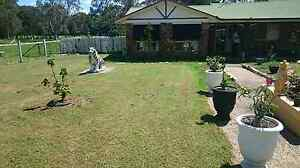 Room for Rent. Farm workers welcome Caboolture South Caboolture Area Preview