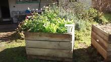 Self-watering Wicking beds. High quality materials.Built to last. Fairfield Darebin Area Preview