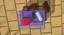 Mouse cage with accessories East Victoria Park Victoria Park Area Preview