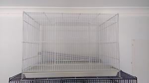 Medium sized Bird Cage Reynella Morphett Vale Area Preview