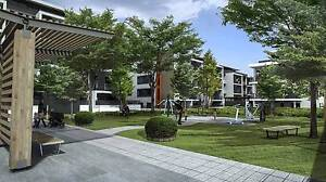 Carlingford 2 Bed NSW First Owner Grant $10,000 Eligible Carlingford The Hills District Preview