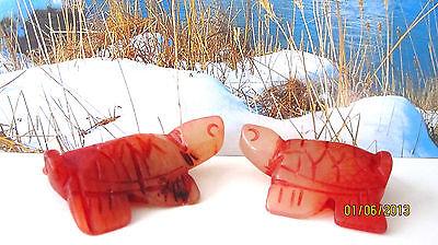 Schildkröte Fengshui Glücksbringer Gesundheit Jade  Paar AAA