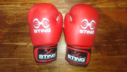 STING 12OZ boxing gloves
