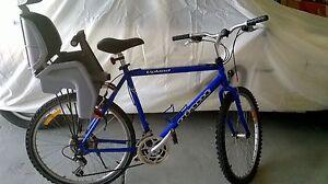 Giant Mountain Bike Warrnambool Warrnambool City Preview