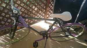 Great unisex Bike Kallangur Pine Rivers Area Preview