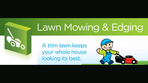 Professional and affordable lawn mowing service