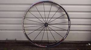 Capagnolo Eurus Front Wheel Narwee Canterbury Area Preview