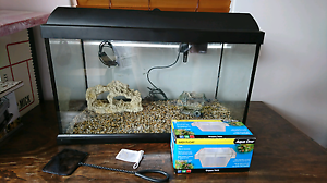 60L fish tank ( still available ) Inglewood Stirling Area Preview